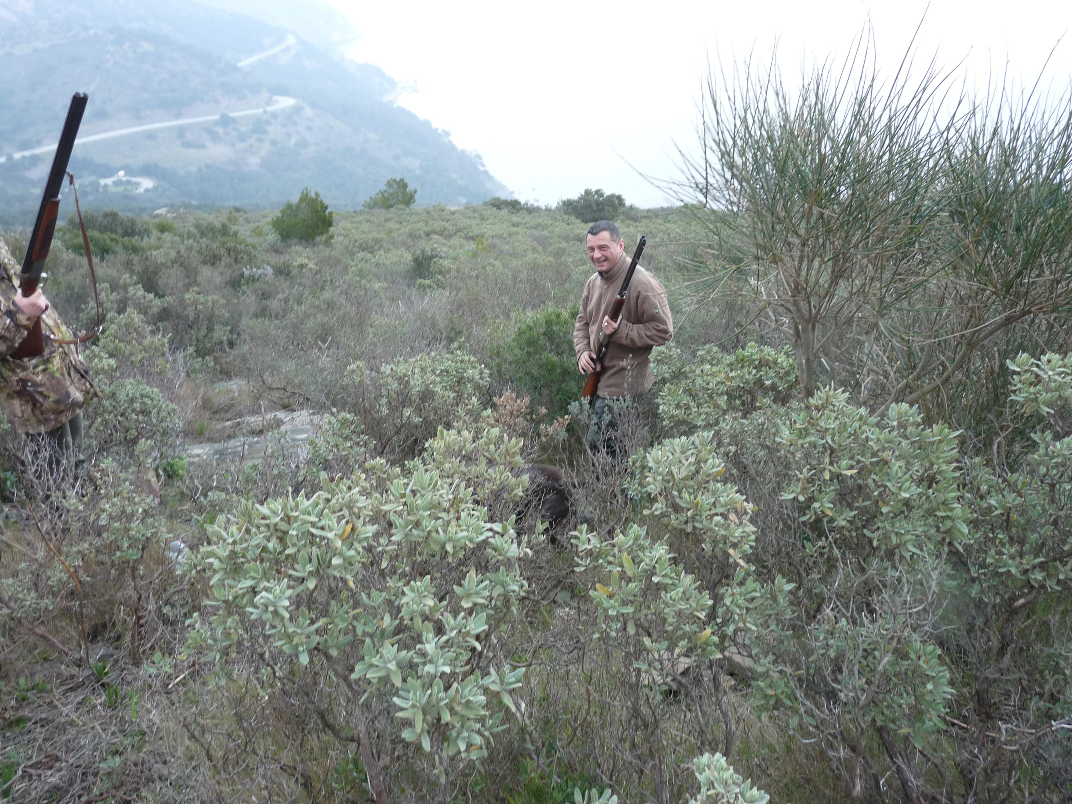 Action de chasse